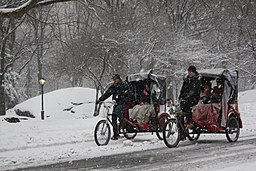 Rickshaw in Central Park Winter