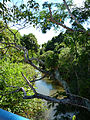 Rio das Almas na ponte do bairro Rio Abaixo.jpg