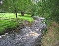 River Dane north east of Gradbach - geograph.org.uk - 317223.jpg