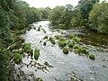 River Severn - geograph.org.uk - 553080.jpg