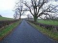 Road at Leek - geograph.org.uk - 628275.jpg
