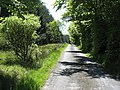 Road to Wester Whin - geograph.org.uk - 1332517.jpg