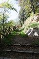 Rocca di Arquata del Tronto - sentiero nel parco.jpg