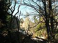 Roche du Corbeau (1 130 m).jpg