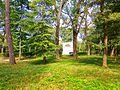 Rotonda in Oleksandria Park 1.jpg