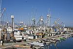 Row of Fishing Boats.jpg