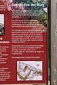 Ruine Falkenstein 8060.jpg