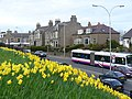 Rush Hour at Balgownie - geograph.org.uk - 401709.jpg