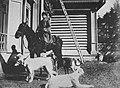 Russischer Photograph - Jagd mit Borzoj-Hunden (Zeno Fotografie).jpg
