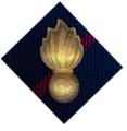 SADF 7 Medium Artillery badge.png