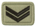 SANDF Rank Insignia Corporal embossed badge.png