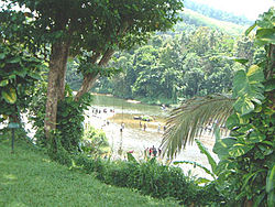 View of the Kelani river