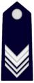 SMAG.GendarmeriaPontificia.png