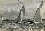 Sailing on Sydney Harbour (NSW) (7417189396).jpg