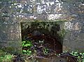 Saint Innans Well.JPG