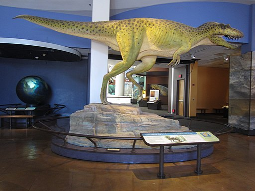 San Diego Natural History Museum - Virtual Tour