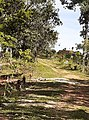 San jose de Tarros nueva frontera santa barbara honduras (3).jpg