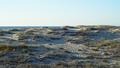 Sand (27859658819).png