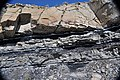 Sandstone-coal-tonsteins (Ericson Sandstone over Rock Springs Formation, Upper Cretaceous; hairpin curve roadcut along Superior Cutoff Road, east of Superior, Wyoming, USA) 9 (48961372496).jpg