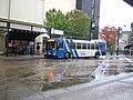 Santa Rosa CityBus 7811orig.JPG