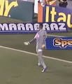 Santos vs Palmeiras - Vladimir.png