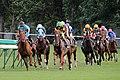 Sapporo Racecourse 001.jpg
