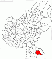 Location in Mureș County