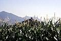 Schladming 1995 04.jpg