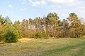 Schlangen - 2015-04-09 - LIP-057 Senne noerdlich Oesterholz (36).jpg