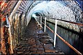 Scout tunnel - geograph.org.uk - 1437685.jpg