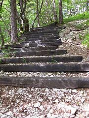46 Charred Steps