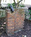 Sculpture of Sam the cat Queen Square - geograph.org.uk - 1397706.jpg
