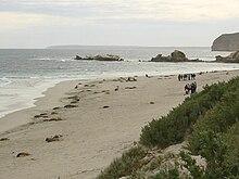 Sealink Kangaroo Island Accommodation