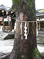 Seimei Shrine-3539.jpg