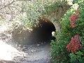 Sendero-embalse-de-Bornos P1420618.jpg