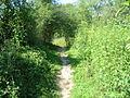 Sentier passeur 03.jpg