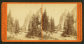 Sentinel Rock, by I. W. Marshall.png