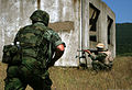 Serbian and Bulgarian rifleman.jpg