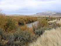 Sevier River Leamington Utah.jpg