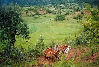 Agriculture in Myanmar