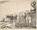 Sheep, from a set of 16 plates MET DP828264.jpg