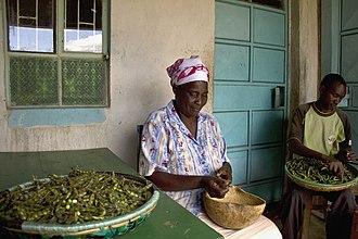 Pigeon pea - Kenyans shelling pigeon peas