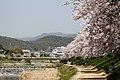 Shugakuin villa 2011-04 (5834494981).jpg