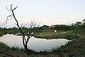 Shumba's Rest - panoramio.jpg