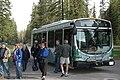 Shuttle Bus (4599137171).jpg
