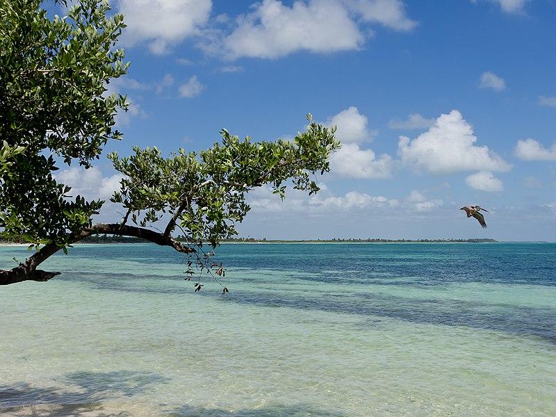Melhores praias perto da Playa del Carmen