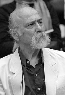 Siavash Teimouri Iranian architect and artist