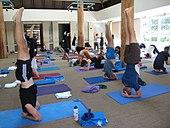 Sirsasana Yoga Yajnavalkya Mukta Posture.jpg