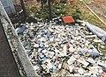 South Dade Regional Library damaged books.jpg