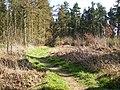 St. Cuthbert's Way near Ancrum - geograph.org.uk - 395410.jpg